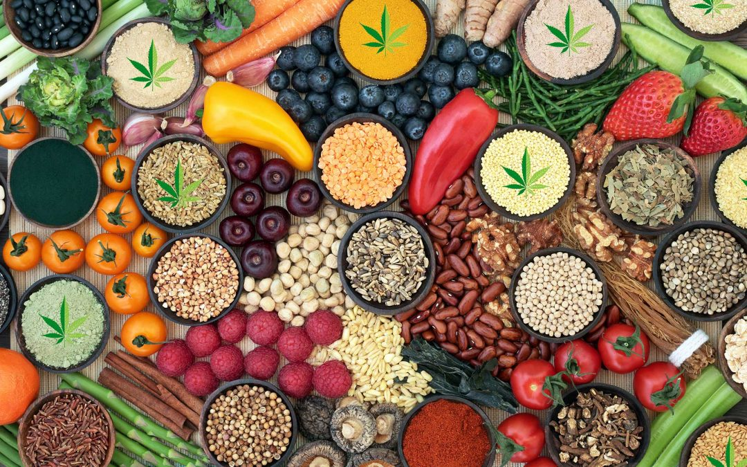 Powered By Plants: Hemp CBD & Plant-Based Diets