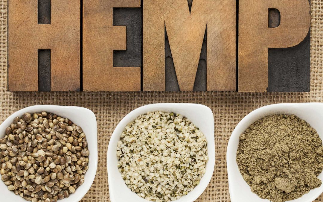 Hemp Seed Health Benefits and Uses